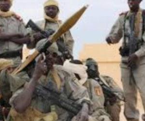Sahel: Boko Haram ambushes Chad soldiers, kills ten